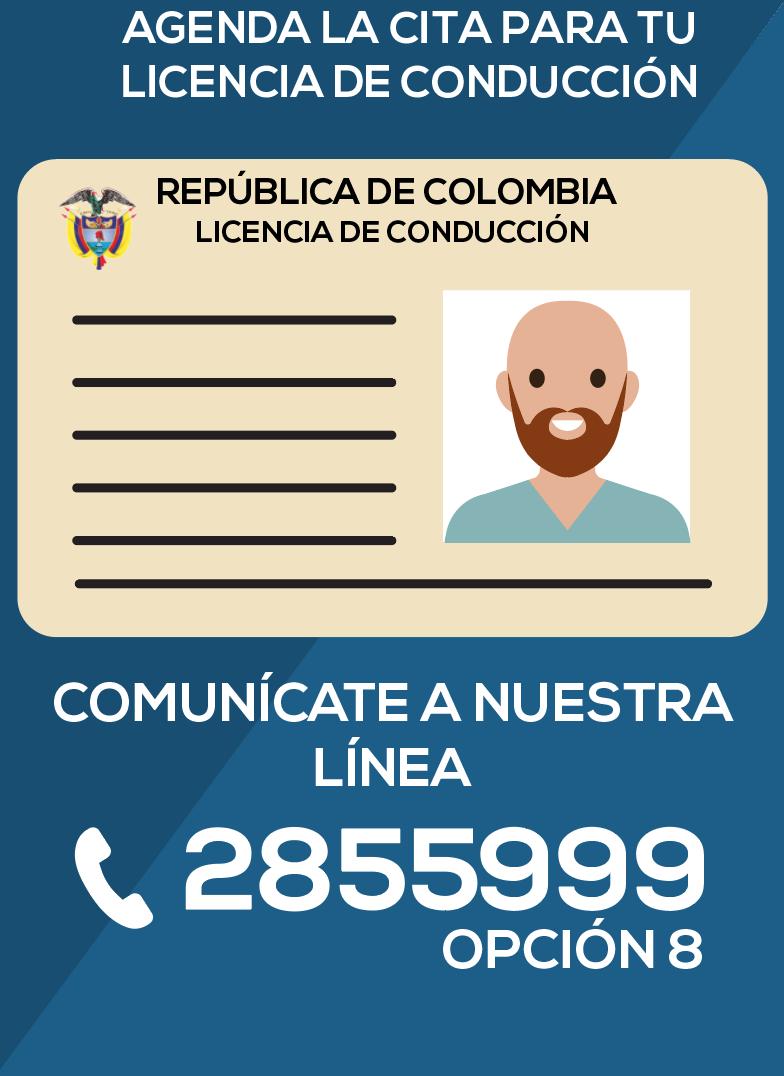licencia-de-conduccion-linea-opcion-8-ctp